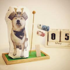 柴犬レオンくん/勇ましい武将/オーダー作品/手作り/ハンドメイド/こどもの日/... あっという間に4月も半分終わり。  こど…