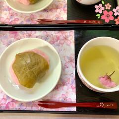 桜もち/食器/カトラリー/キッチン雑貨/食卓/キッチンアイテム/... 🍃🌸桜もちと桜茶🍃🌸  ご利用者様と一緒…(2枚目)