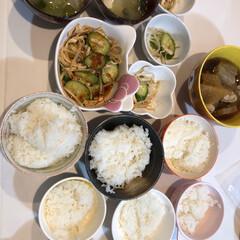 6人家族/野菜炒め/大根煮物/味付け/砂糖/醤油/...