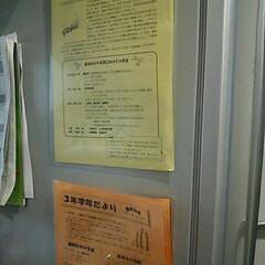 ポスリー/お便り/小学生 小学校のおたより。冷蔵庫には貼りたくなか…