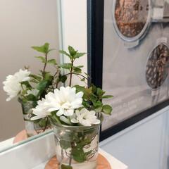 ハーブ/洗面台 洗面台に飾る庭のハーブと花