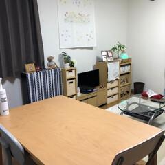 ニトリ/我が家のテーブル ずっと娘の簡単な学習机を食卓代わりにして…(1枚目)