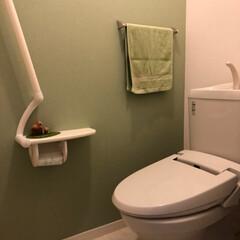 トイレ アパートの壁がグリーンだったので、色を統…