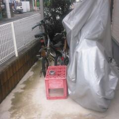 自転車置き場/DIY/住まい/建築 屋根のみだった自転車&バイク置き場にDI…(3枚目)