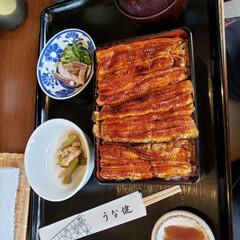 スタミナご飯/スタミナ丼/夏に向けて/スタミナ飯/スタミナ盛り 美味しかった^_^