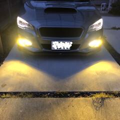 安全性/安全対策/DIY/フォグランプ/車/おでかけ これから雪、雨のための対策として フォグ…