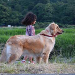女の子/娘/フォロー大歓迎/ペット/ペット仲間募集/犬/... お嬢様とボディガード