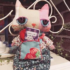人形/着せ替え人形/ハンドメイド/猫ドール/ペット/猫/... 猫ドールつくりました。本を一冊バッグに入…