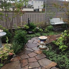石畳/レンガ敷き/庭仕事/お庭のリフォーム/ナチュラルガーデン/至福のひととき/... 久しぶりの庭仕事 余っていたレンガをベン…(5枚目)