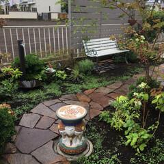石畳/レンガ敷き/庭仕事/お庭のリフォーム/ナチュラルガーデン/至福のひととき/... 久しぶりの庭仕事 余っていたレンガをベン…(6枚目)