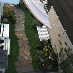 お庭リフォーム/ミドラス/雑木の庭/夏水組広め隊/Decor Interio Tokyo/ナチュラルガーデン/... 二階から見たお庭の全容  こんな感じにな…