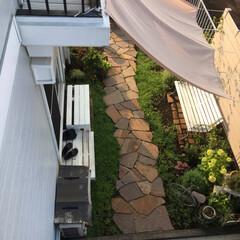 ミドラス/お庭リフォーム/雑木ガーデン/ベンチ/オーニング/ガーデンファニチャー/... 今日のお庭 先ずは2階から撮影 4枚目か…