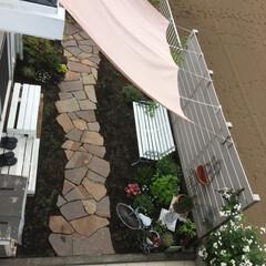 アイアン雑貨/シェード/蜂/モッコウ薔薇/お庭リフォーム/ミドラス/... 久しぶりのお庭です  一重モッコウ薔薇が…