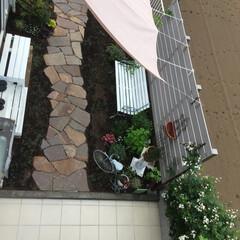 石張り乱形/石張り小路/シェード/雑木ガーデン/ナチュラルガーデン/庭リフォーム/... 2階からのフォトです。 全体像、分かりま…