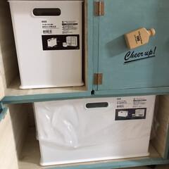 ゴミ箱収納/DIY/収納 前回のゴミ箱収納の中です。(╹◡╹)