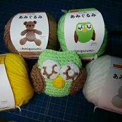 あみぐるみ/ハンドメイド/100均/ダイソー/かぎ針編み/アクリル毛糸 緑色糸ふくろうはそのまままねっこ♪gre…