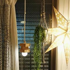 プチプラ/照明DIY/ハンギンググリーン/フェイクグリーン/ナチュラル/フォロー大歓迎/... 超簡単ナチュラルな照明を作りました✨  …