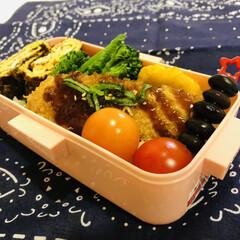 卵焼き/ブロッコリー/ミニトマト/黒豆/チキンナゲット/ササミ/... 今日のお弁当  ササミのカツ チキンナゲ…(1枚目)