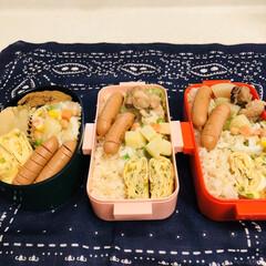 おうちごはんクラブ/LIMIAごはんクラブ/自分弁当/卵焼き/蒸し大豆/豚肉/... 今日のお弁当  豚肉と大根の煮物 卵焼き…