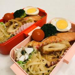 おうちごはんクラブ/焼売/お酢/もやし/切り干し大根/鮭/... 今日のお弁当  焼鮭 味付けたまご 切り…
