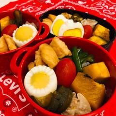 娘弁当/焼売/ミニトマト/カボチャ/ピーマン/鶏胸肉/... 今日のお弁当 &  昨日作った キュウリ…