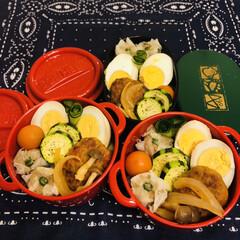 焼売/ハンバーグ/ゆで卵/ズッキーニ/ミニトマト/ボヌール/... 今日のお弁当  トマト煮込みハンバーグ …