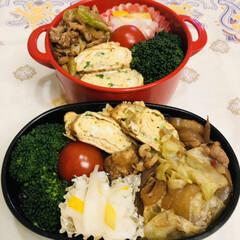 お弁当/自分弁当/娘弁当/ランチ/玉ねぎ/豚肉/... 今日のお弁当  回鍋肉 ブロッコリー ミ…