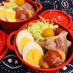 豚バラ肉/ミニトマト/キャベツ/ゆで卵/お弁当/LIMIAごはんクラブ/... 今日のお弁当  豚の角煮を すっごい久し…