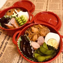 ハウス マカロニグラタンクイックアップミートソース2皿分 80.5g ×10個(その他ドリンク、水、お酒)を使ったクチコミ「今日のお弁当   ボヌール   マカロニ…」