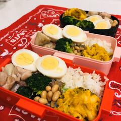 自分弁当/LIMIAごはんクラブ/カボチャ/大豆/鶏肉/里芋/... 今日のお弁当  里芋と鶏肉の煮物 カボチ…