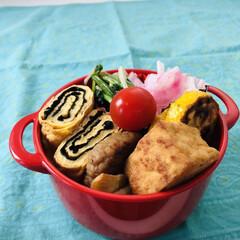 娘弁当/玉ねぎ/ハンバーグ/大根/厚揚げ/もやし/... 今日のお弁当  ハンバーグ ミニトマト …