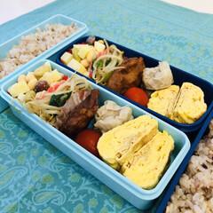 発芽大豆/金時豆/青大豆/大豆/焼売/ジャガイモ/... 今日のお弁当  唐揚げ 卵焼き ミニトマ…
