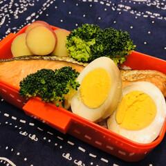 鮭/たまご/レモン/さつま芋/おうちごはんクラブ/LIMIAごはんクラブ/... 今日のお弁当  焼鮭 プロッコリー 味付…
