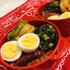 チキンのトマト煮/ツルムラサキのお浸し/自分弁当/娘弁当/ウインナー/ゆで卵/... 今日のお弁当