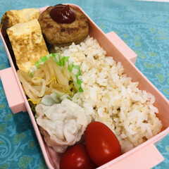 卵焼き/ミニトマト/焼売/もやし/ハンバーグ/自分弁当/... 今日のお弁当  ハンバーグ 卵焼き 酢も…