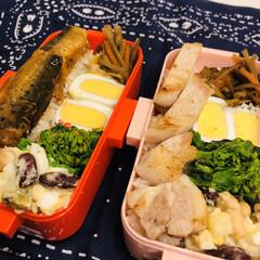 ごぼう/お豆/ゆで卵/菜花/イワシ/豚肉/... 今日のお弁当