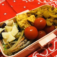 自分弁当/ドライカレー/ごぼう/卵焼き/お豆/ミニトマト/... 今日のお弁当  ドライカレー ミニトマト…