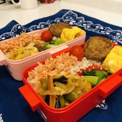 鶏肉/夏野菜/ミニトマト/卵焼き/青梗菜/ハンバーグ/... 今日のお弁当  ハンバーグ 卵焼き 青梗…