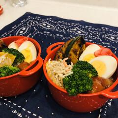 ミートボール/カボチャ/ごぼう/ゆで卵/娘弁当/ブロッコリー/... 今日のお弁当  ミートボール ブロッコリ…