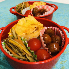 ボヌール/トマトジュース/エリンギ/玉ねぎ/キャベツ/鶏胸肉/... 今日のお弁当  鶏胸肉と野菜のトマト煮 …