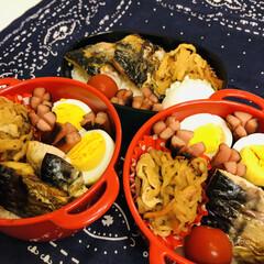 ゆで卵/ミニトマト/切り干し大根/鯖/暑い/お弁当/... 今日のお弁当  鯖 ゆで卵 切り干し大根…