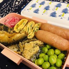 紫玉ねぎ/卵焼き/ウインナー/グリンピース/おから/イワシ/... 今日のお弁当  イワシの煮付け(缶詰) …