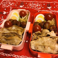 ゆで卵/ミニトマト/ポン酢/豚バラ/ミートボール/酢もやし/... 今日のお弁当  豚バラポン酢焼き ミート…