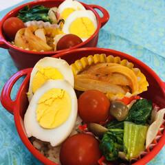お弁当/娘弁当/ゆで卵/シメジ/玉ねぎ/青梗菜/... 今日のお弁当  ハンバーグトマト煮込み …