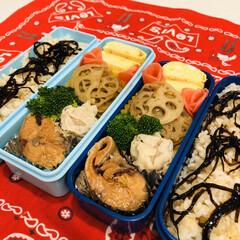 娘弁当/れんこん/焼売/ブロッコリー/鯖/たまご/... 今日のお弁当  鯖の味噌煮(缶詰) れん…