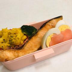 プロッコリー/カボチャ/ゆで卵/おうちごはんクラブ/LIMIAごはんクラブ/娘弁当/... 今日のお弁当  焼鮭 カボチャサラダ 味…