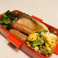 プロッコリー/茹で卵/ミニトマト/なばな/ぶり/おうちごはんクラブ/... 今日のお弁当  ぶりの照り焼き なばなの…