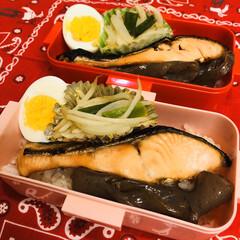 おうちごはんクラブ/LIMIAごはんクラブ/新玉/ネギ/もやし/味噌/... 今日のお弁当  焼鮭 ゆで卵 こんにゃく…