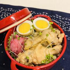 お弁当/娘弁当/ゆで卵/甘酢/紫玉ねぎ/お酢/... 今日のお弁当  手羽元さっぱり煮 煮卵 …