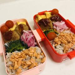 卵焼き/ゴーヤ/甘酢/紫玉ねぎ/ハンバーグ/LIMIAごはんクラブ/... 今日のお弁当  ハンバーグ ミニトマト …